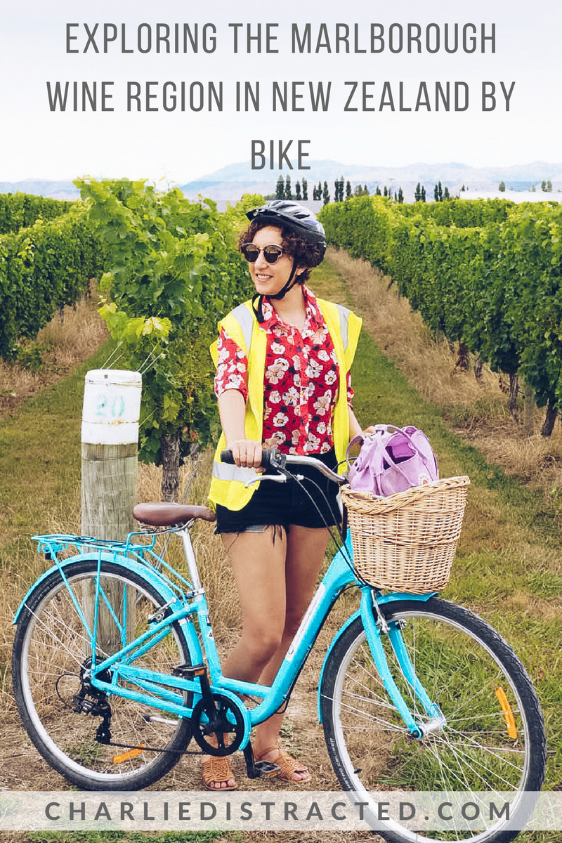 A Self-Guided Cycling Tour of the Marlborough Wine Region, New Zealand