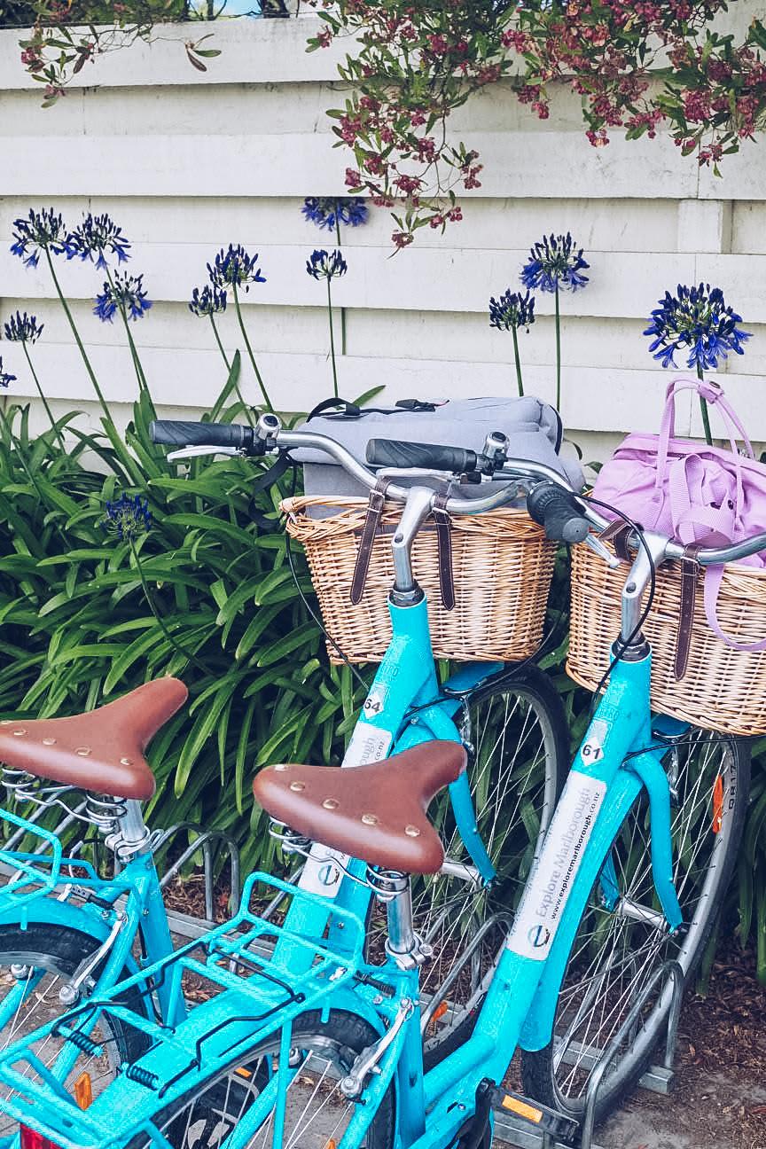 turquoise hire bikes