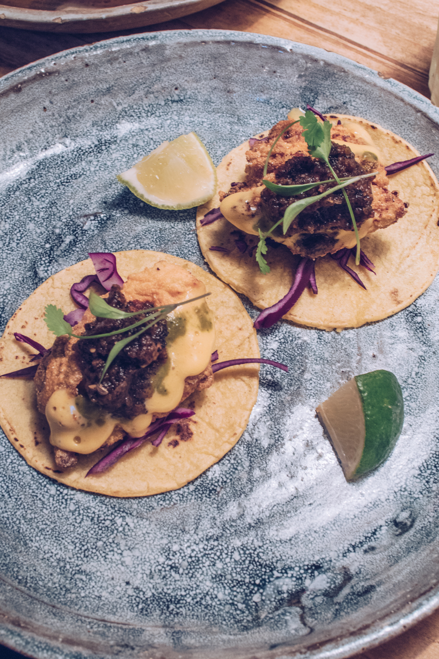 baja fish tacos breddos