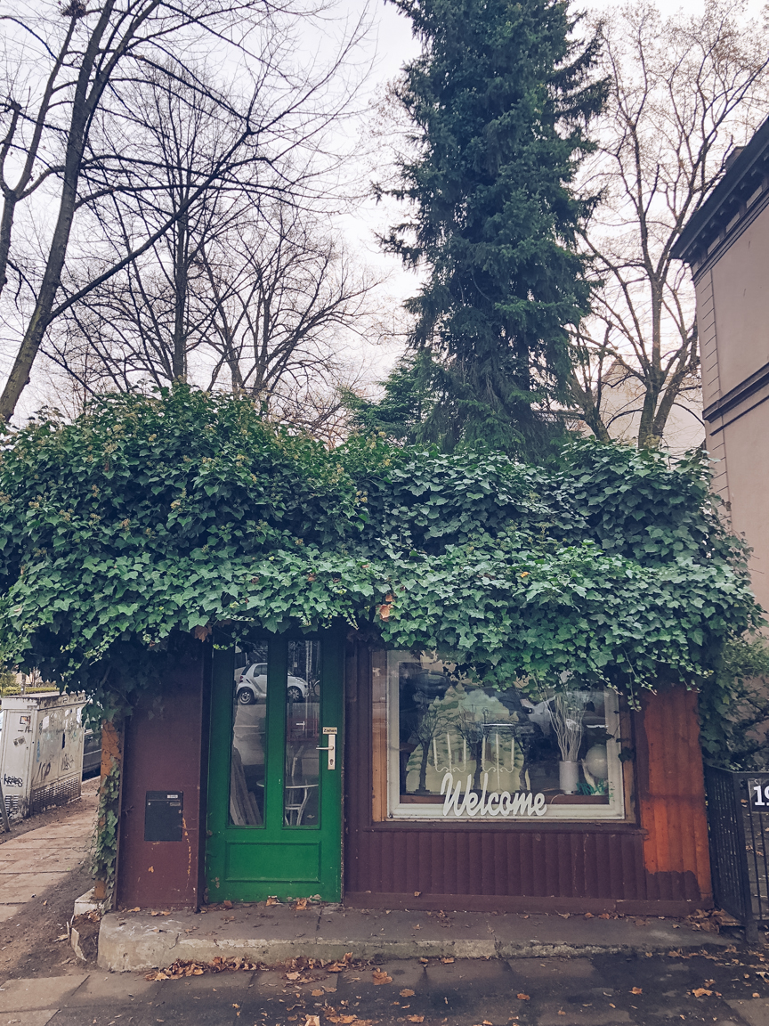 ivy covered shop