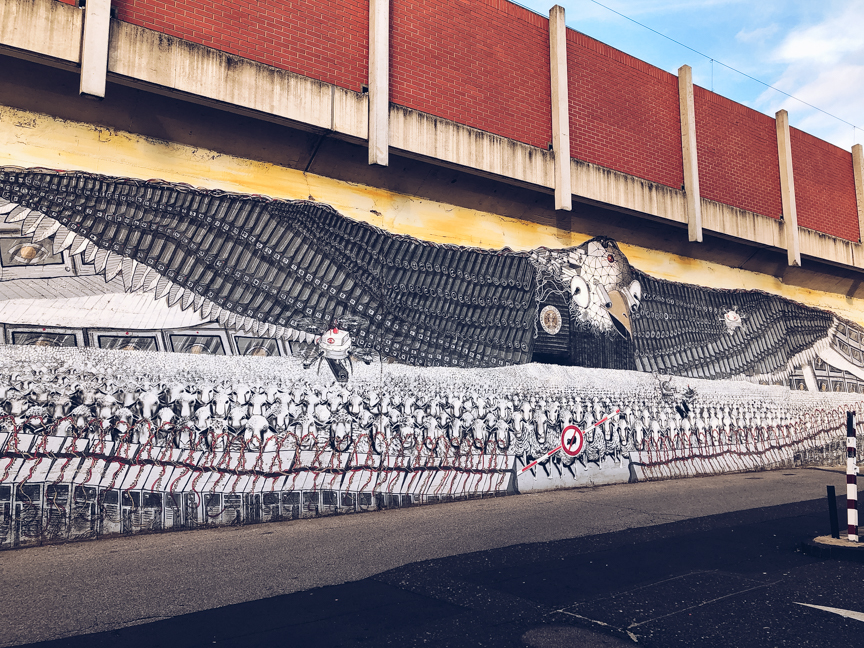 surveillance of the fittest street art mural by captain borderline