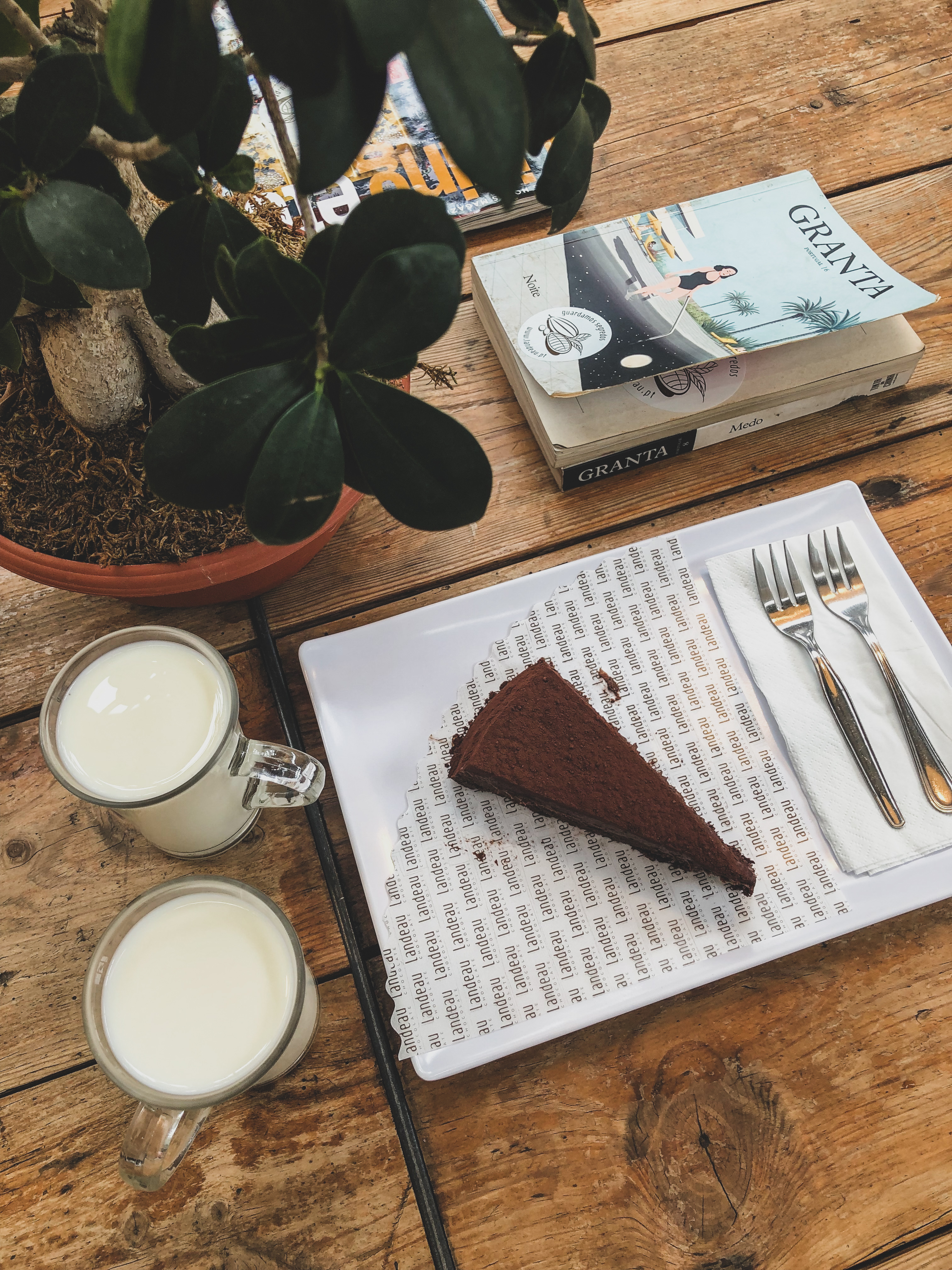 chocolate cake and a glass of milk