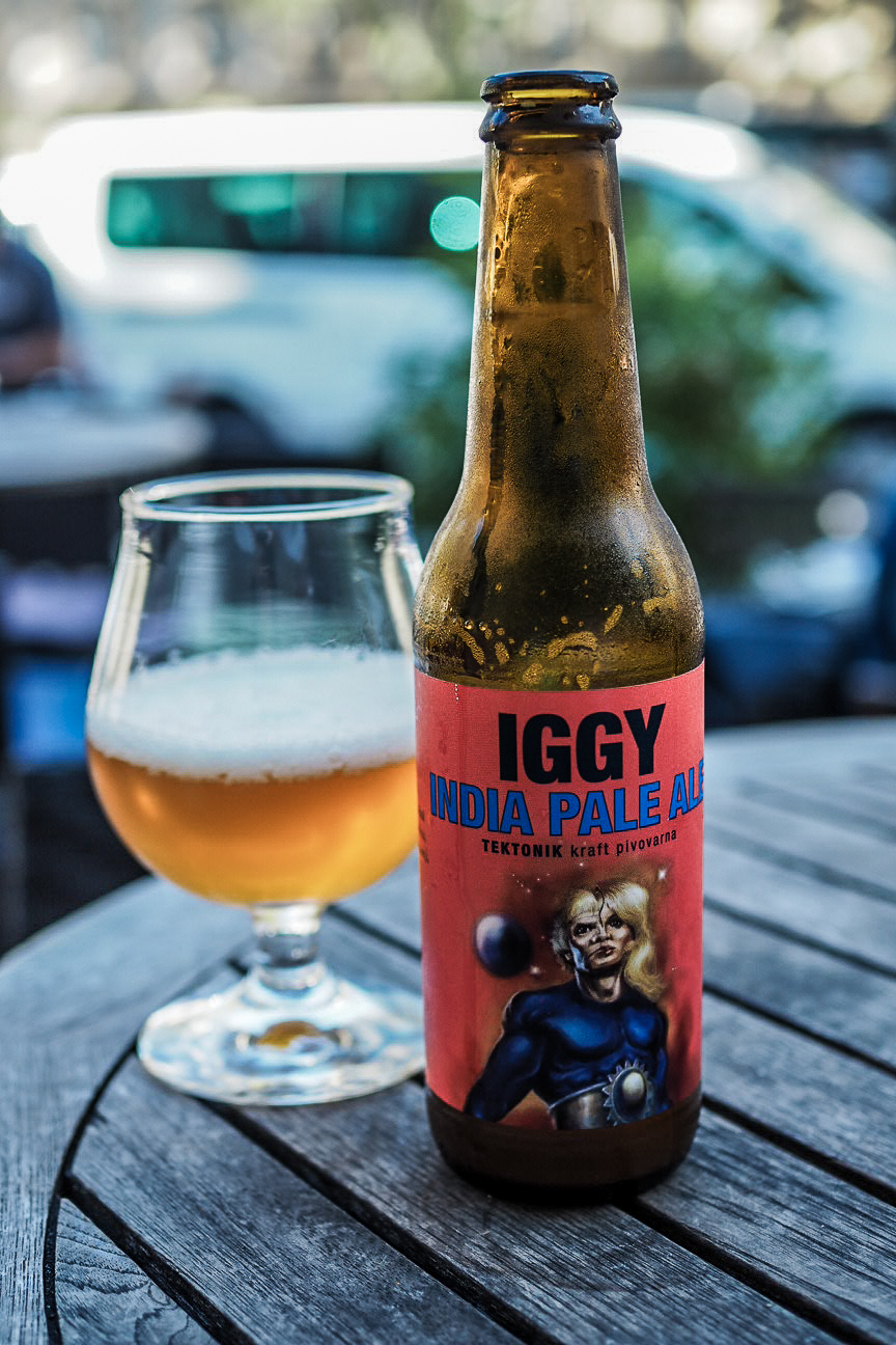 bottle of tektonik brewery iggy IPA