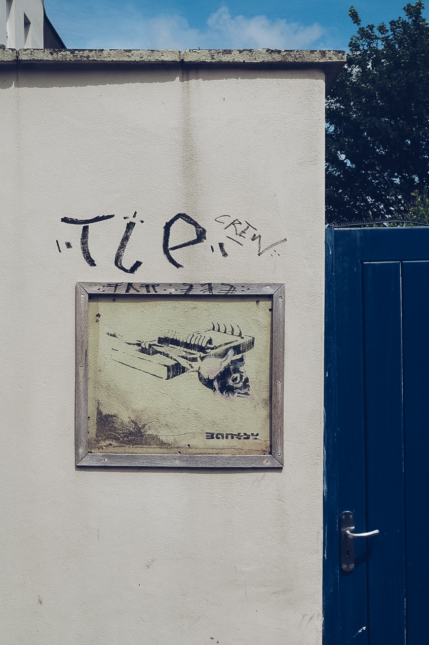 banksy's rose trap is a stencil of a rose caught in a mouse trap. it is framed in perspex on the outer wall of a garden flat