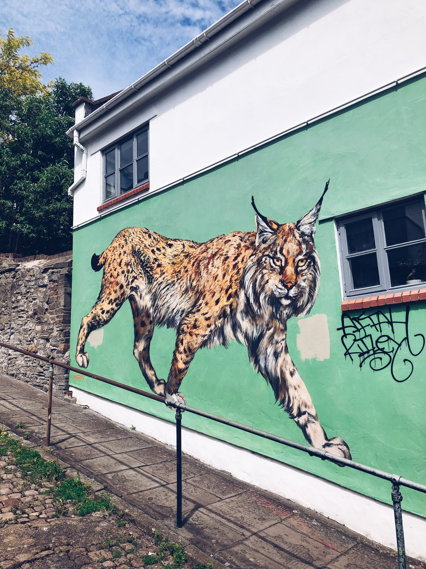 ATM's lynx mural is on a green background on the side of a house